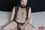 Bearsilien Solo