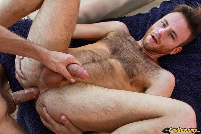 волосатые торрент порно через гей скачать