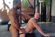 Vinnie Stefano fucks Chip Young