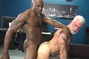 Osiris Blade Breeds Daddy Jake Marshall